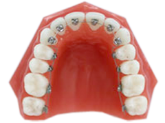 0532orthodontists_04